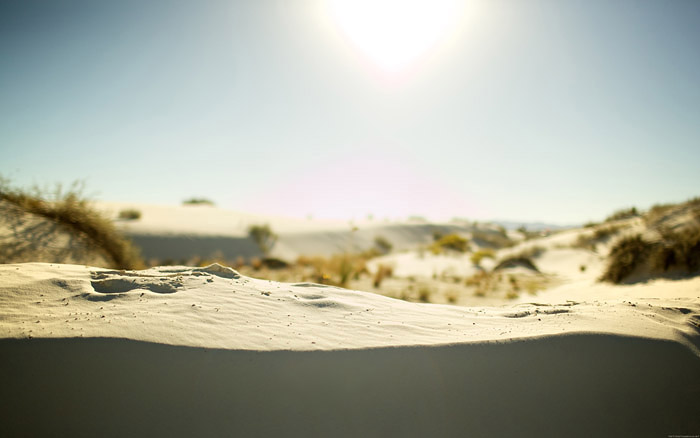 border_dune_desktopsmaller.jpg